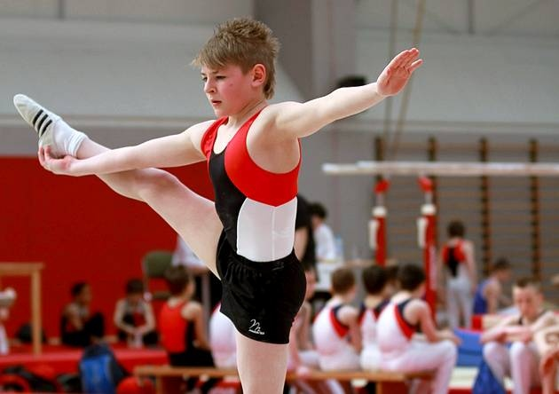 young-male-gymnasts